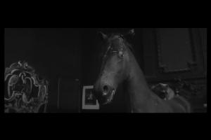чучело лошади