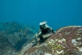 древний житель Океанов
