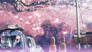 Цветение сакуры...