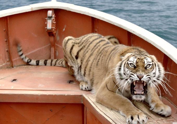 фильм человек и тигр в лодке фильм